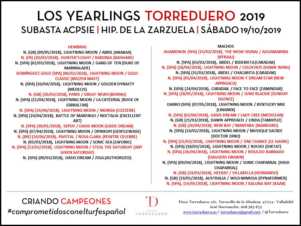 Anuncio yearlings